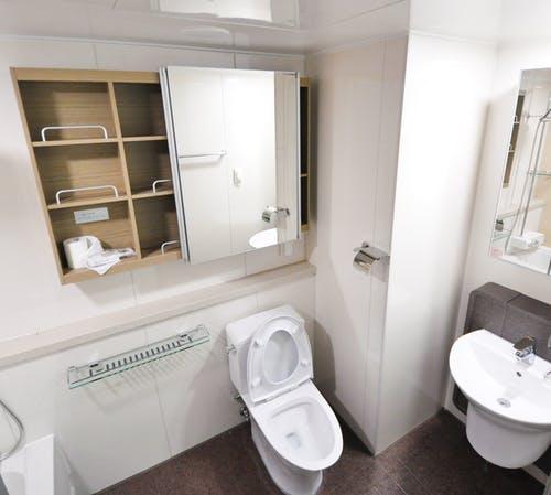 nieuw toilet kopen